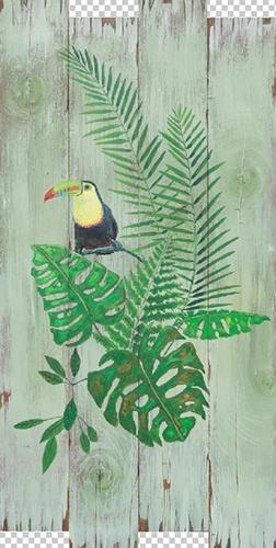 Tropical Paradise Ⅰ