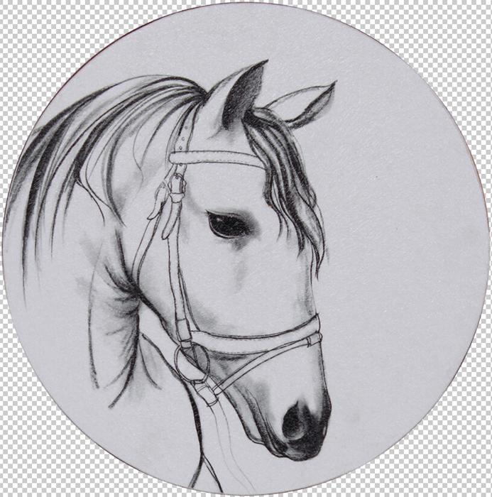 horse head Ⅰ