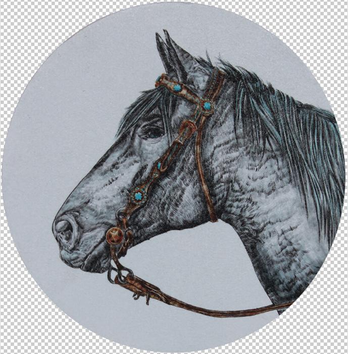 horse head Ⅱ