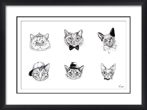 Cat IV