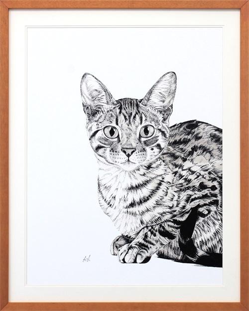 B & W Animal Portrait VI