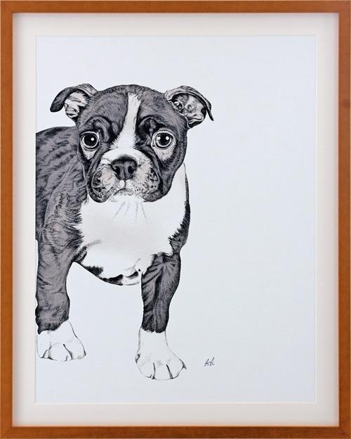 B & W Animal portrait V