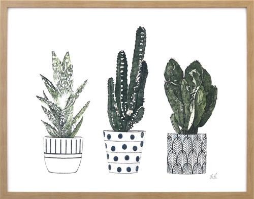 Spiny Desert Plants III