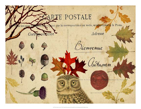Collected Autumn V