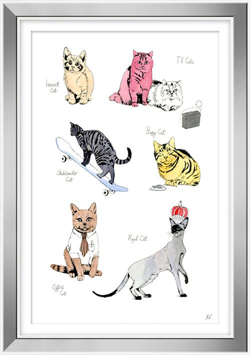 Cat Portrait  IV