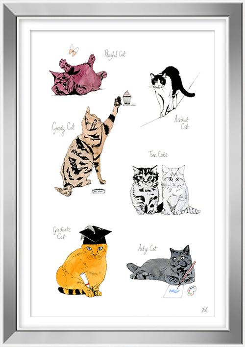 Cat Portrait  VI