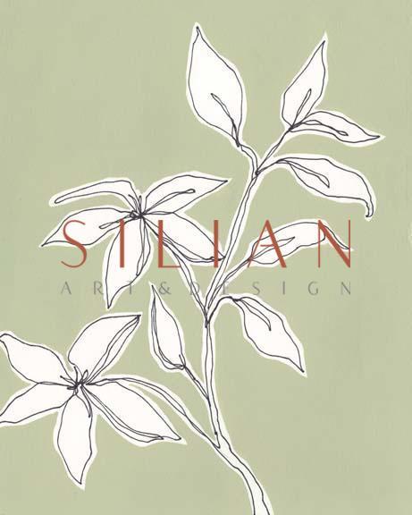 Botanic Drawing I