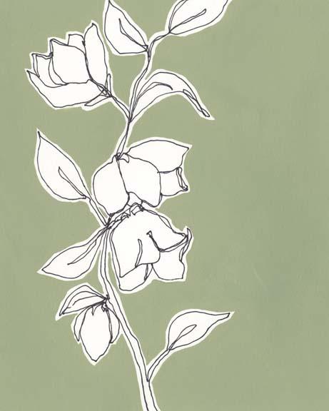 Botanic Drawing II