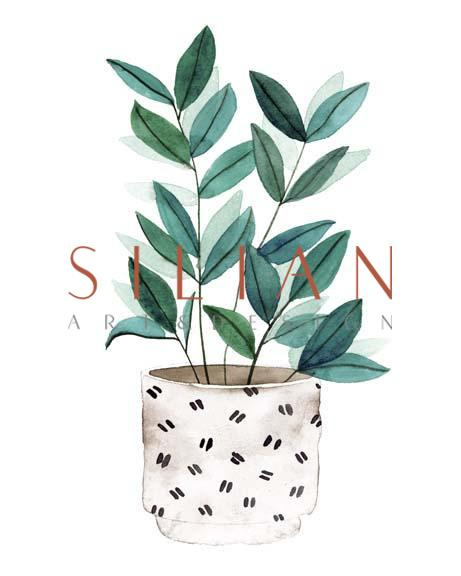 Plant in a Pot I