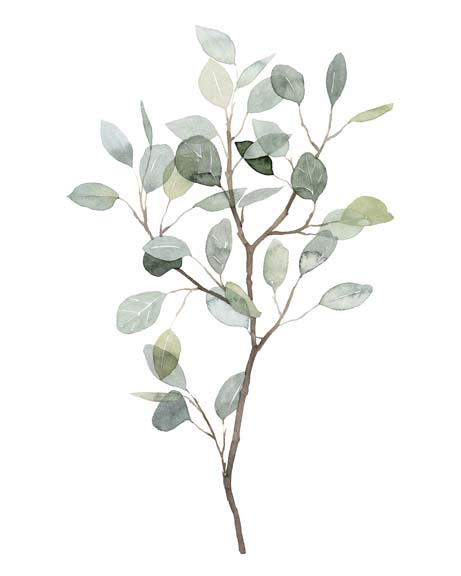 Seaglass Eucalyptus I