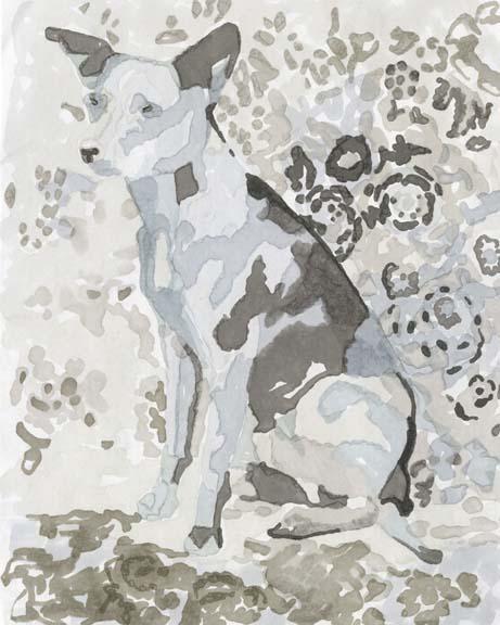 Dog Study IV