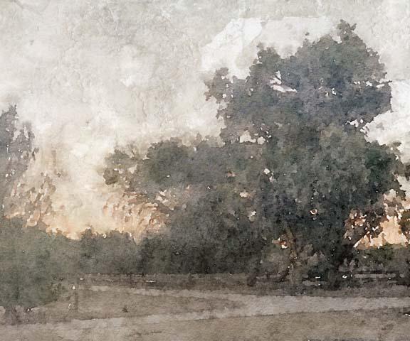 November Morning Mist I