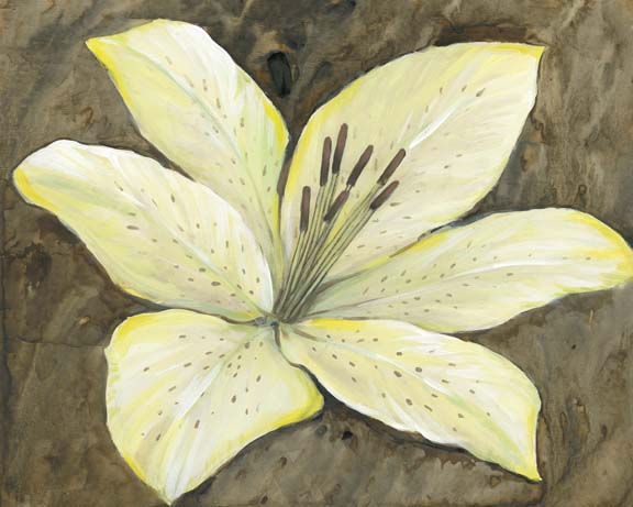 Neutral Lily I