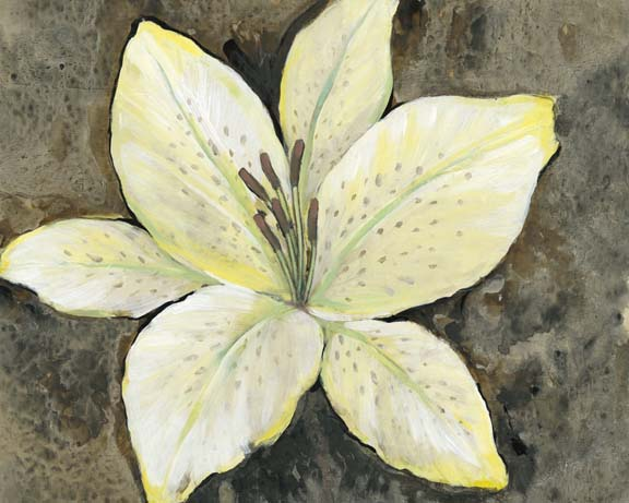 Neutral Lily II