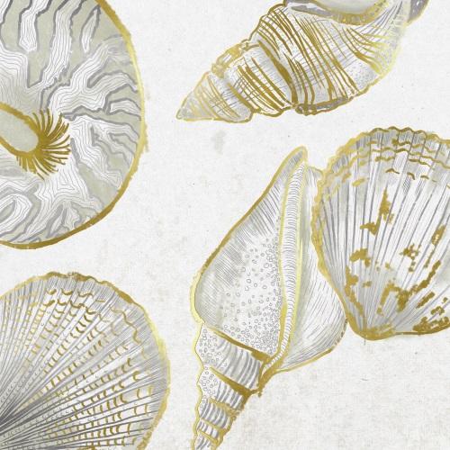 Collected Shells III