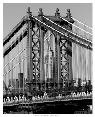 Bridges of NYC I