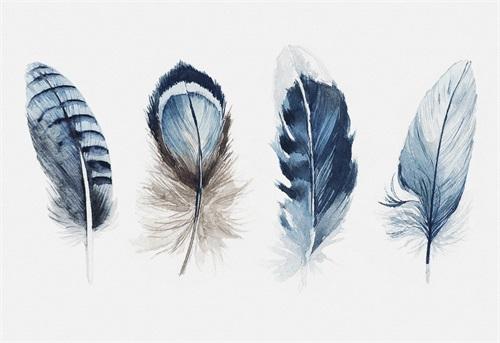 Tribal Feather III