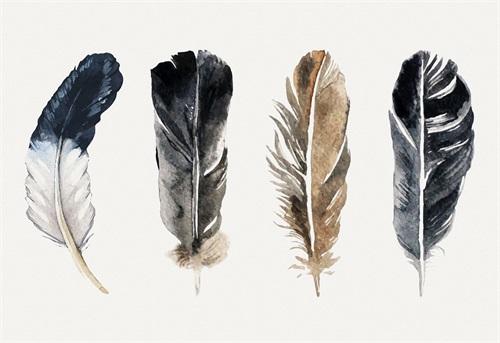 Tribal Feather II