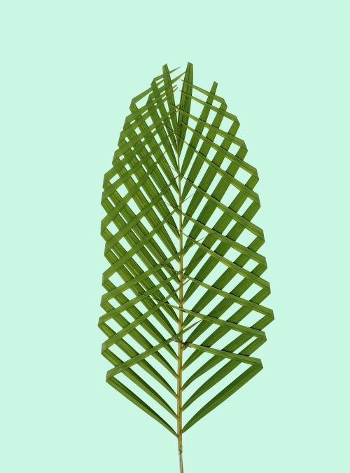 Leaf Craft Painting IX