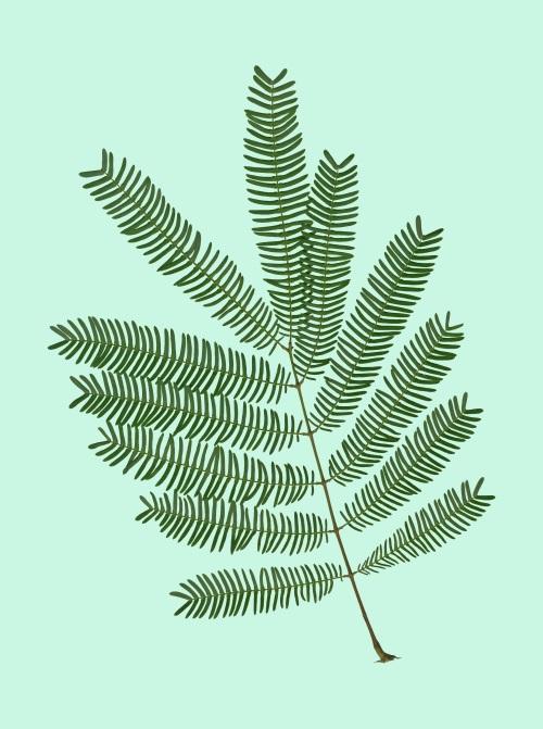 Leaf Craft Painting V
