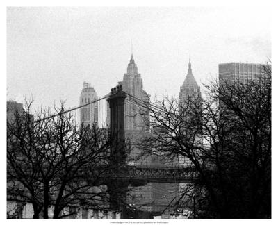 Bridges of NYC V