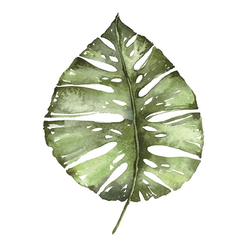 Emerald Tropics II