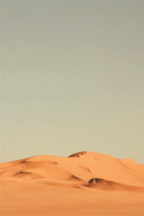 Views of Desert II