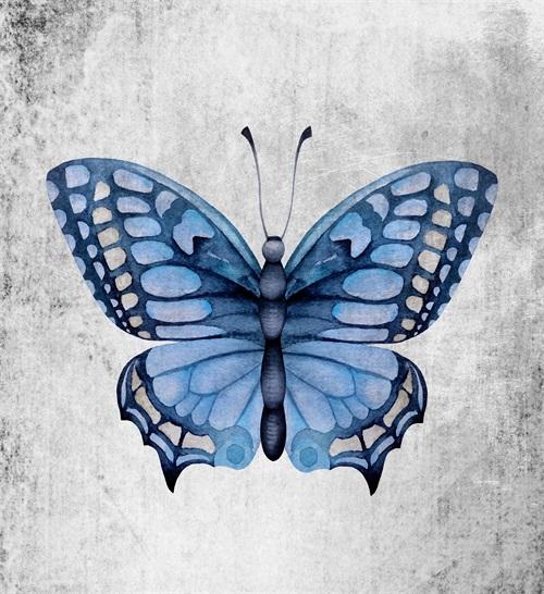 Blue Butterfly Ⅱ