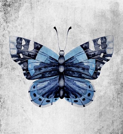 Blue Butterfly Ⅳ