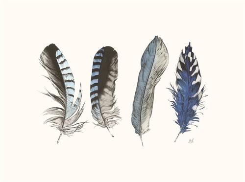 Cyanotype Feathers I