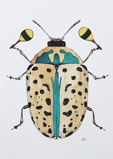 Beetle Study III