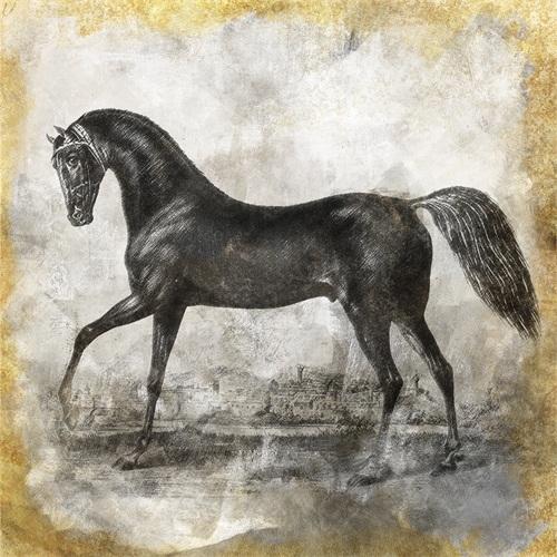 Black Horse III