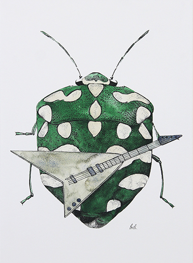 Beetle Study I