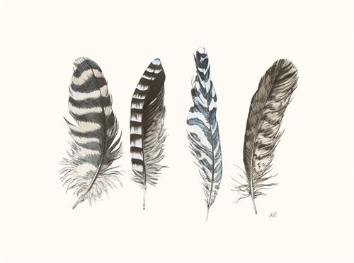 Cyanotype Feathers III