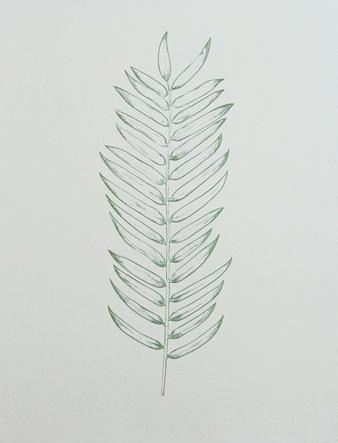 Green Foil Leaf Collection X
