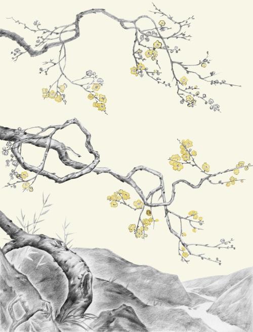 Botanical Sketch Black & White IV