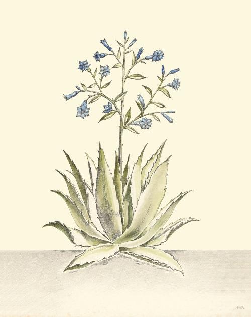 Indigo Floral IV