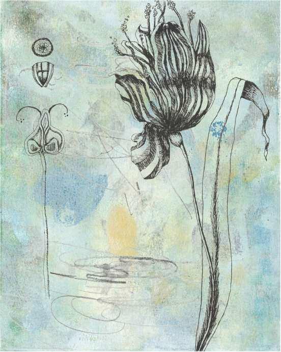 Botanical Abstract I