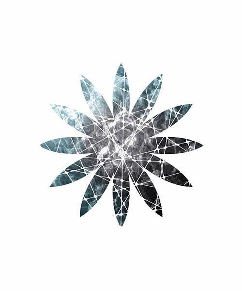 Starry Sky In Snowflake Ⅲ