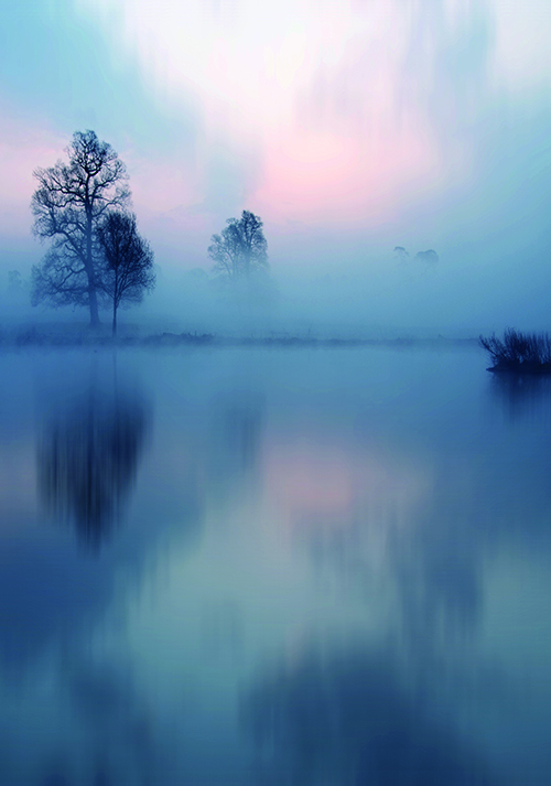 Lake Scene III