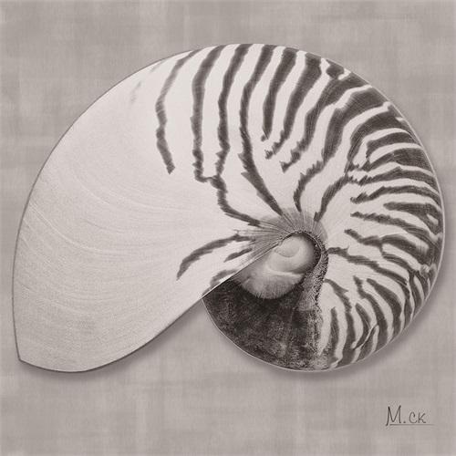 Shell VX