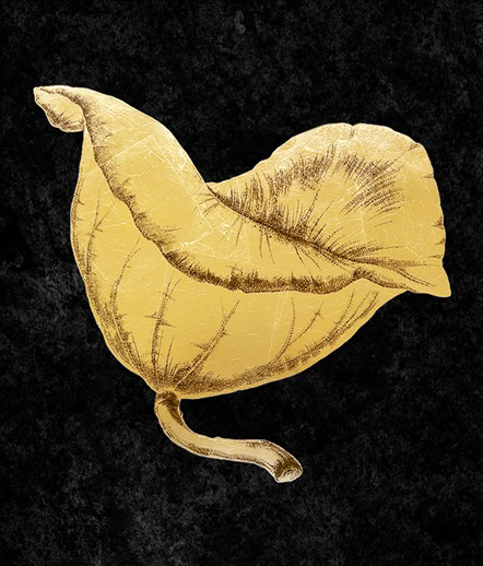 Gold Foil Lotus II
