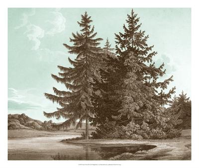 Serene Trees III
