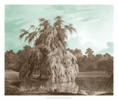 Serene Trees V