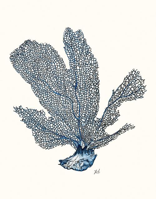 Coral Gesture Ⅱ
