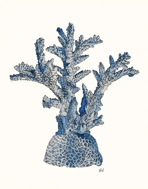 Coral Gesture Ⅰ