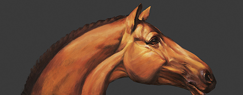 The Guess Of Horse
