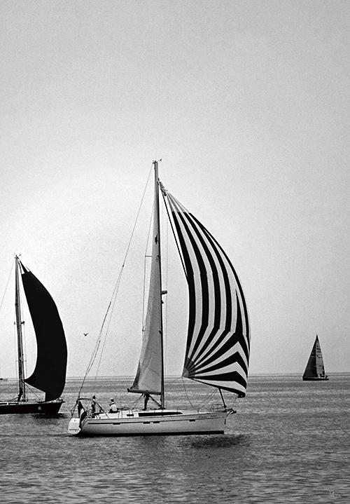 Sail Ⅳ