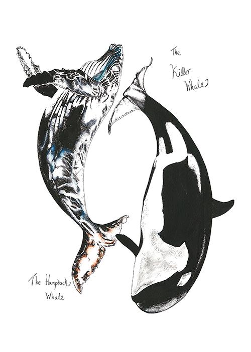 Whale Composition Ⅲ