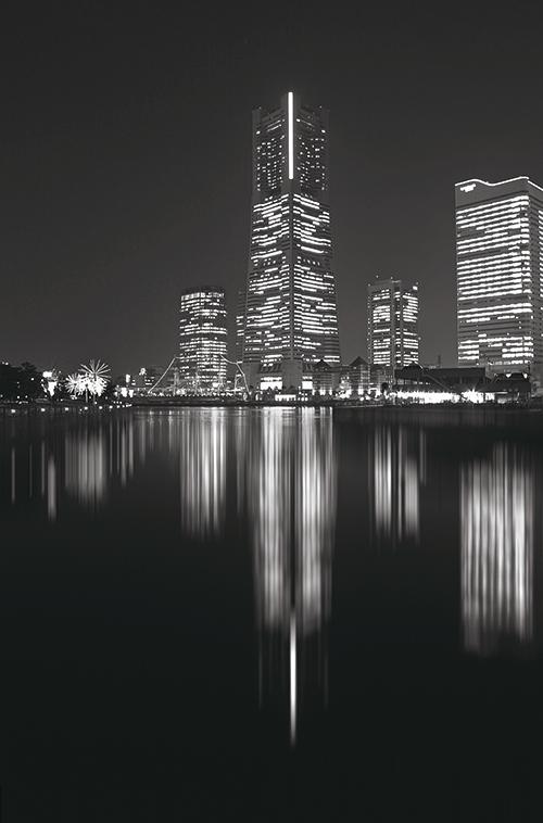 Black And White Architectural Landscape III